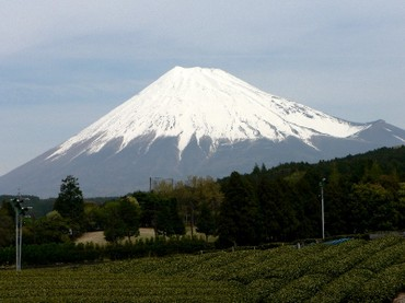 Fuji1_2_1