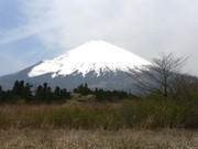 Fuji6_2