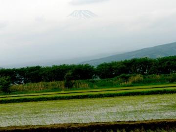 Fujisanj_1