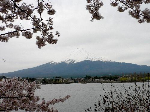 Fujisan24