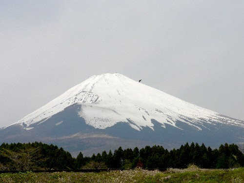Fujisan29