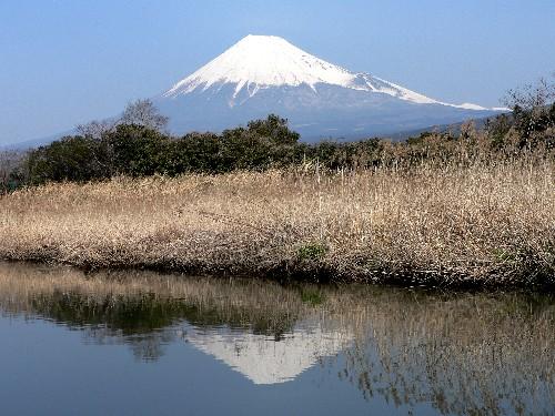 Fujisan6